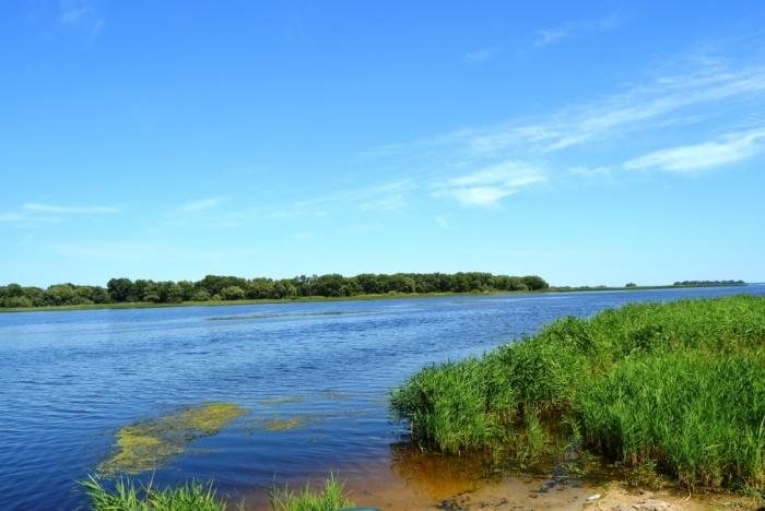 Продажа земли на берегу Днепра в Черкасской области