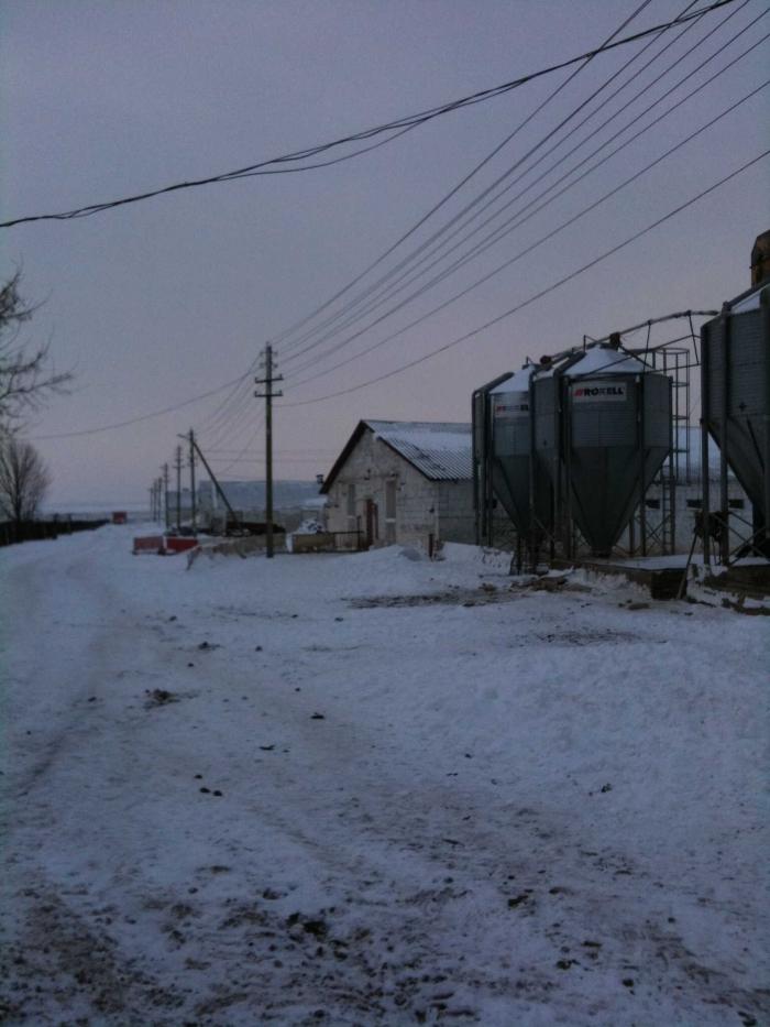 работающий свинокомплекс в 90 км от Минска