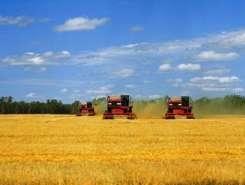 Продам сельскохозяйственное предприятие в Крыму