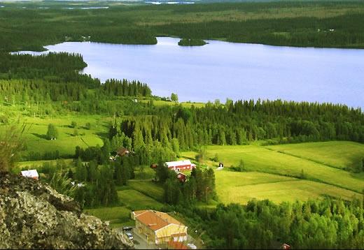 Рыболовные базы в Швеции - стабильный бизнес
