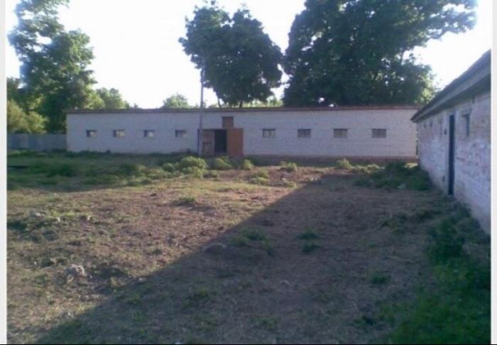 Производственно - животноводческая ферма