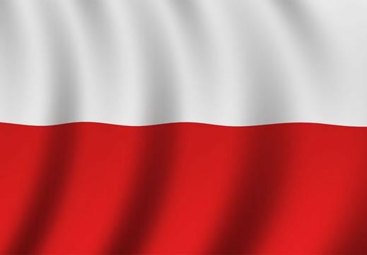 Организация обучения в Польше (прибыль 4 048 € / мес.)