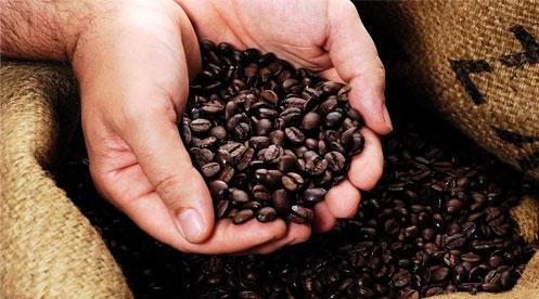 Продам компанию по импорту и сбыту кофе и чая через сети