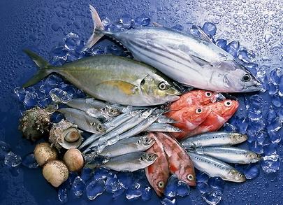 Действующий бизнес по хранению, продаже и переработке рыбо- морепродуктов