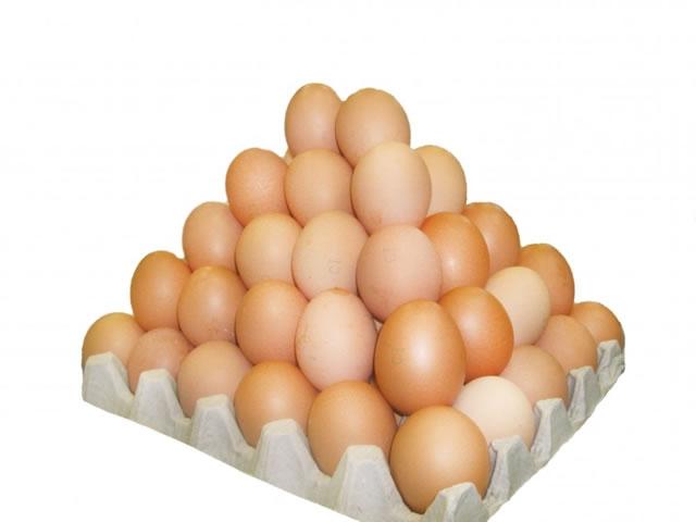 Готовый бизнес по производству яйца