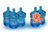 Бизнес по очистке и адресной доставке питьевой воды