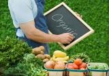 Бизнес по производству органических продуктов