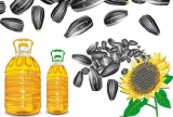Производство по изготовлению ядра подсолнечника и масла, жареных семечек
