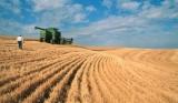 Действующий агрокомплекс в Херсонской области