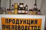 Лечебная продукция пчеловодства на основе эхинацеи пурпурной