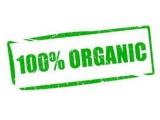 Органическое ягодное фермерское хозяйство