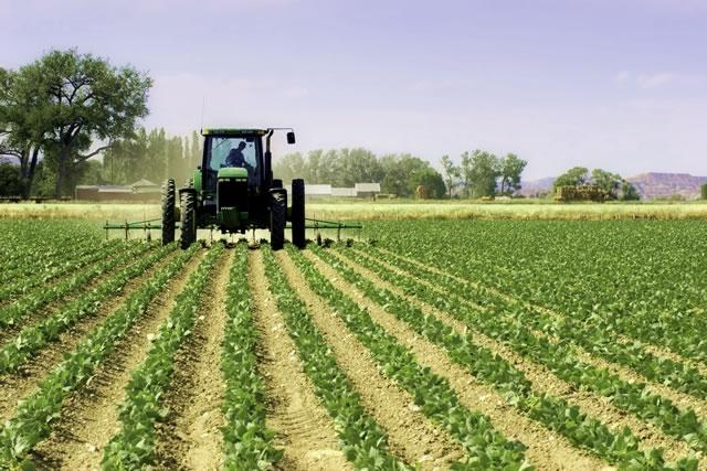 Внушительный рост капитализации аграрных компаний в начале 2017г.