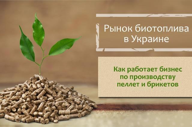 Биоэнергетика в Украине: какое будущее ждёт производство топливных пеллет и брикетов?