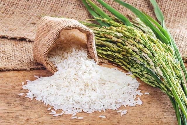 Производство риса в Украине: климатический фактор