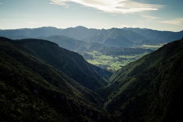 Покупка бизнеса и инвестиции в Новую зеландию