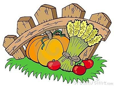 Выбираем бизнес в сельском хозяйстве: органические продукты или гидропоника?