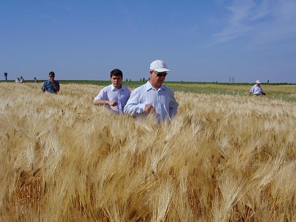 Агробизнес – лидер украинского рынка.