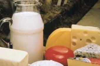 Крупные работодатели пищепрома Украины: ТЕРРА ФУД, Данон